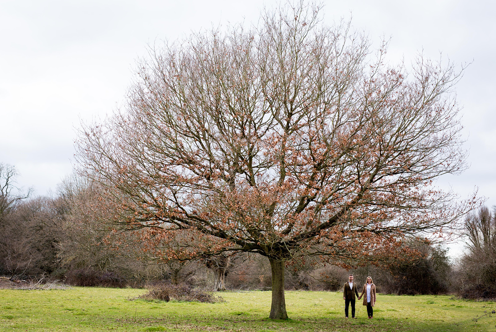A couple standing by a tree during a pre-wedding shoot in Hatfield Forest