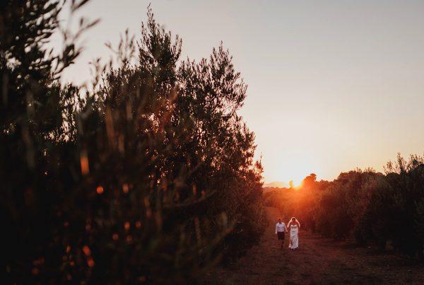 Suset shot of bride & groom walking through olive tree groves at their Finca Son Mir Wedding