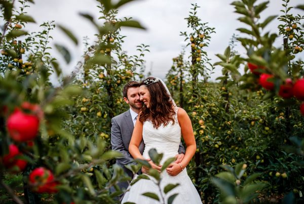 Bride and Groom standing in an Apple Orchard on their wedding day.